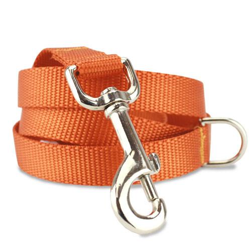 Orange Nylon Dog Leash
