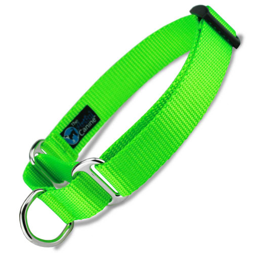 Lime Green Martingale Dog Collar, Neon Green Nylon, Training Dog Collar, Safety Collar