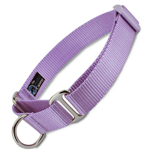 Lavender Martingale dog Collar, Nylon, Limited Slip Safety Collar