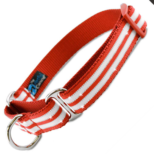 Holiday martingale Collar, Christmas Bling Stripe, peppermint stripes, red white and metallic silver
