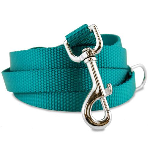Teal dog leash