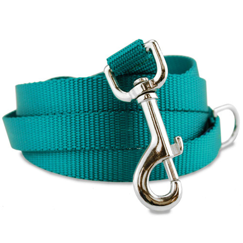 Teal dog leash