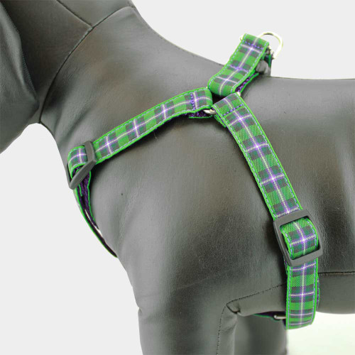 Purple & Green Plaid Dog Harness, Hibernian Tartan