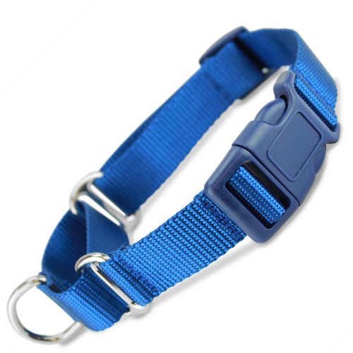 Blue Martingale with Quick release buckle, blue plastic buckle and adjuster