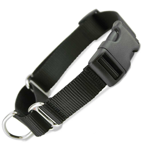 Black Buckle Martingale with black buckle