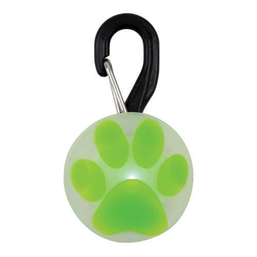 Green Paw Print LED Dog Tag, Small