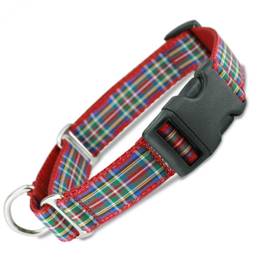 Martingale Collar with buckle, quick snap, Scottish Plaid Buckle Martingale, Royal Stewart tartan