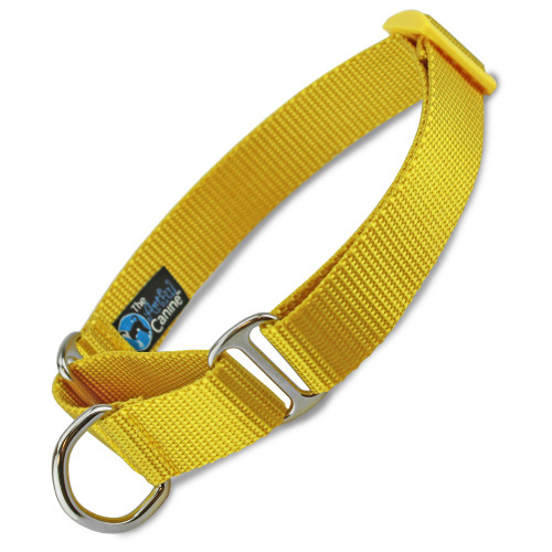 Yellow Martingale Dog Collar, Nylon, slip on