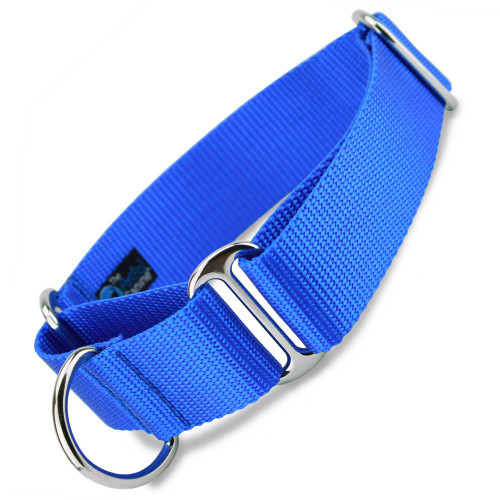 "Royal Blue 1.5"" Wide Nylon Martingale Collar"