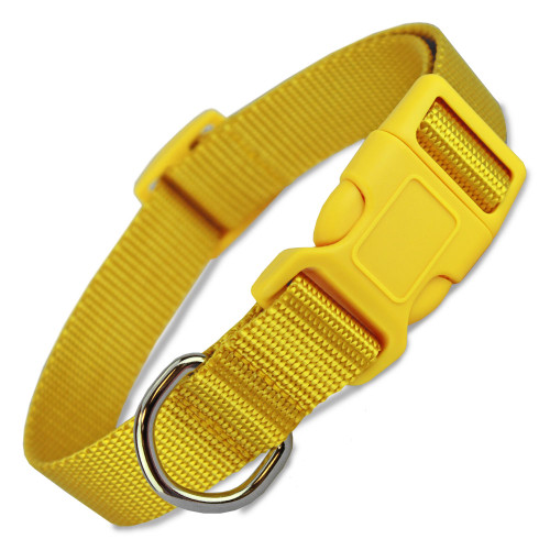 Yellow Dog Collar, basic nylon, yellow ribbon dog collar