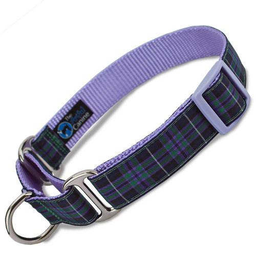 Highland tartan plaid martingale dog collar on lavender