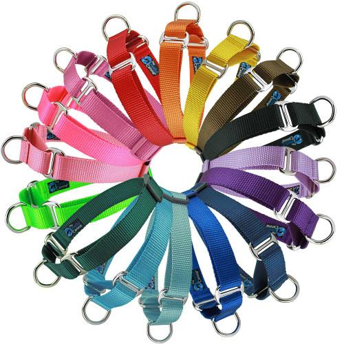 Customized Nylon Martingale dog collars