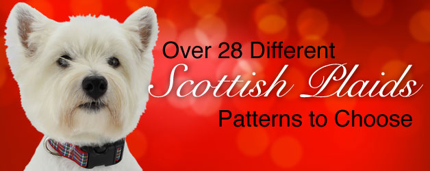 holiday tartan dog collars