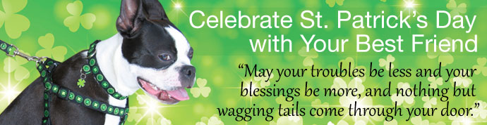 St Patricks Day Dog Collars