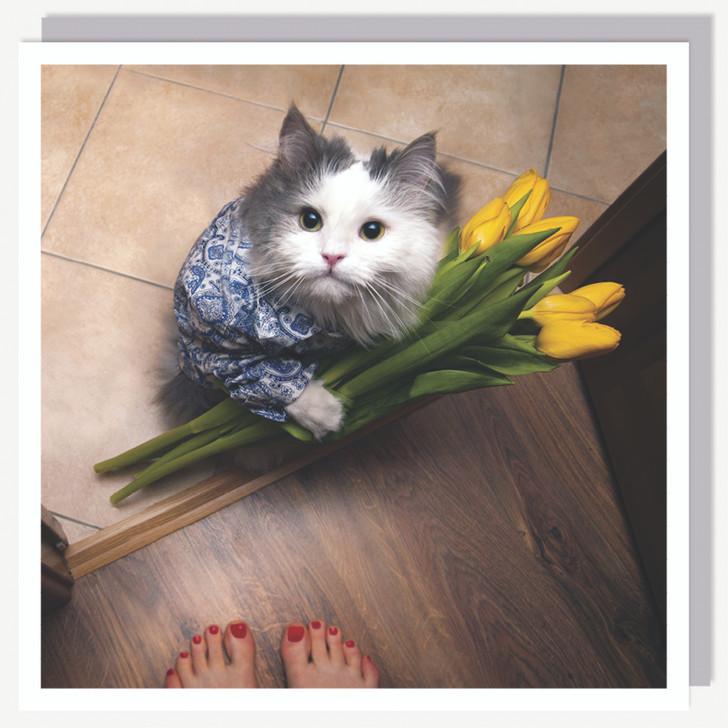 1000215 - TULIP CAT