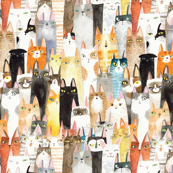 GWTOA42 - CATS CATS CATS!