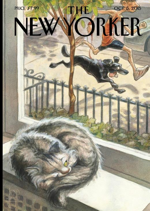 NYV108 - Cat Nap, Dog Play