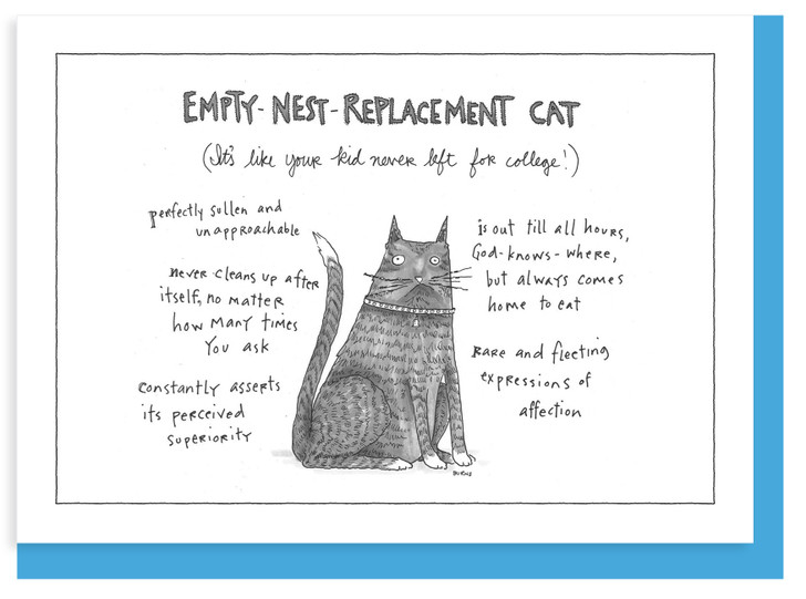 NYC349 - Replacement Cat