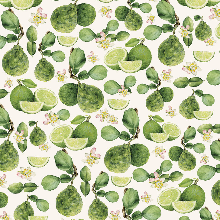 T1536 - LIMES