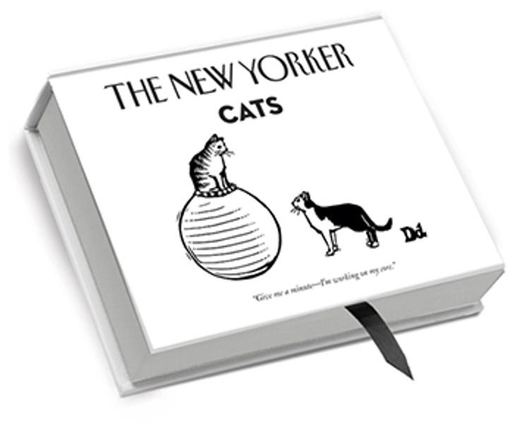 NYB03 - Cats