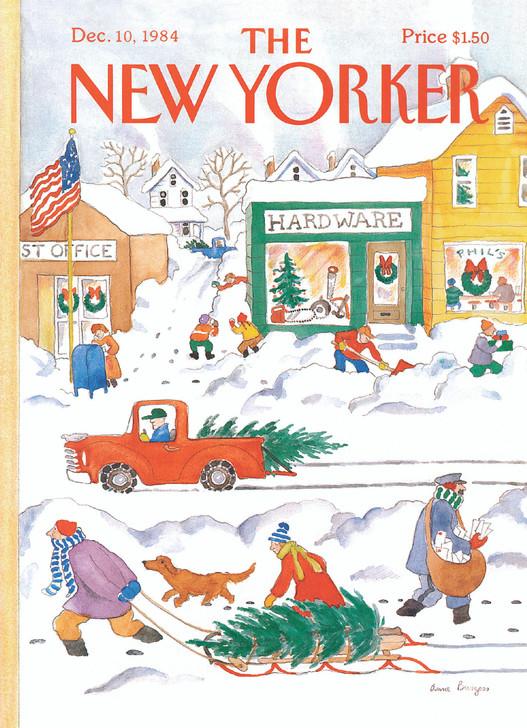 NYVX070 - Suburban Winter