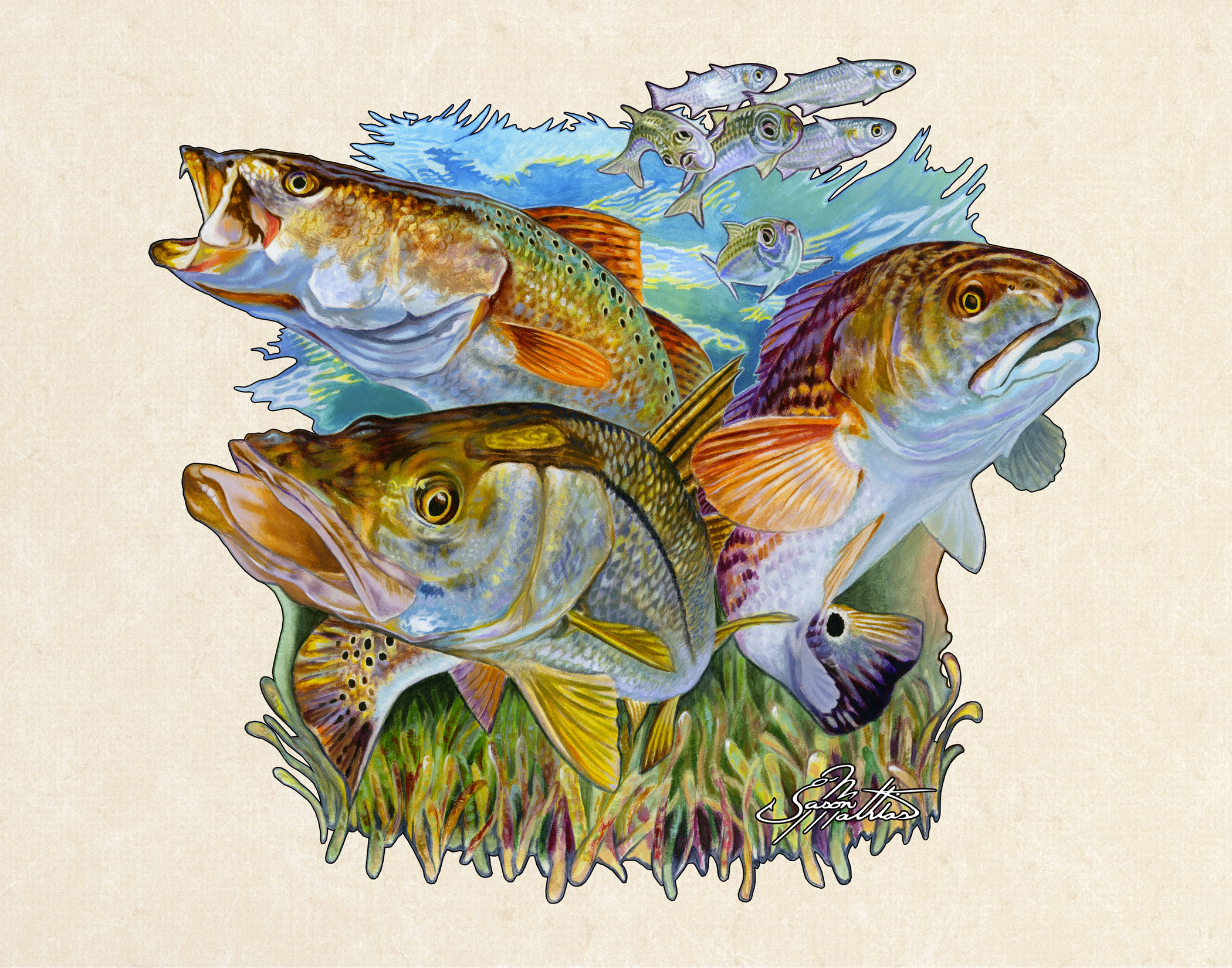 inshore-slam-snook-trout-redfish.jpg
