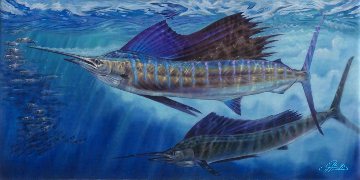 sailfish-art-jason-mathias-gamefish-art-sport-fish-art-billfish-art-underwater.jpg