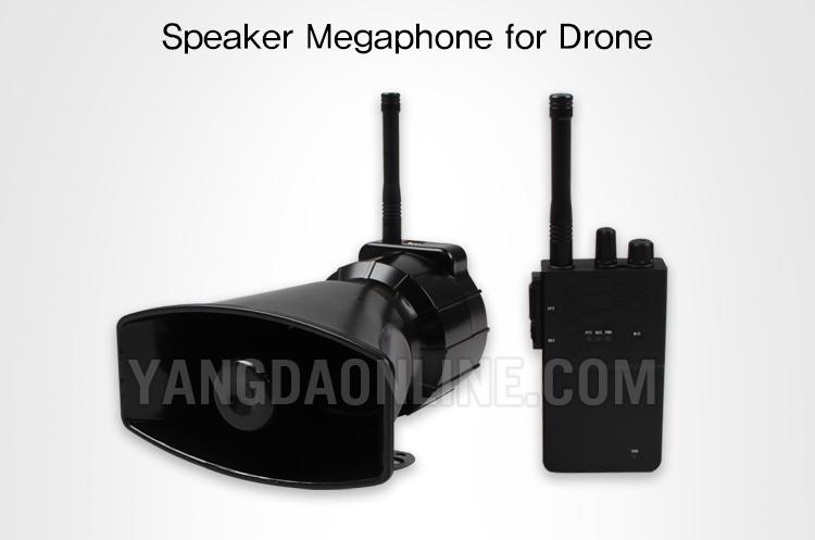 megaphone-01.jpg