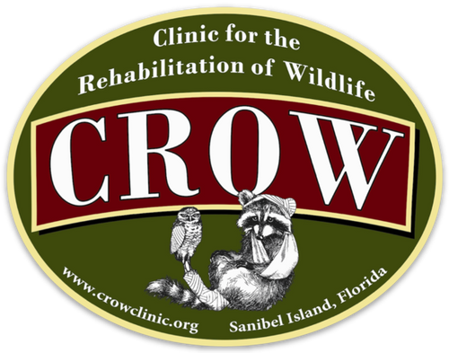 "CROW 4.5""x3.5"" Logo Sticker"