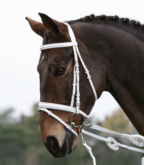 Vaulting Bridle - White