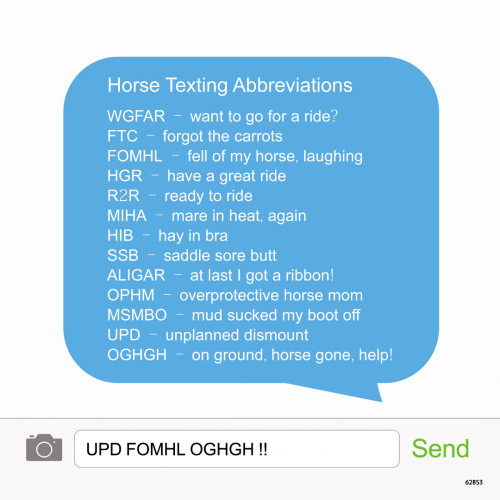 Eco Magnet - Horse Texting
