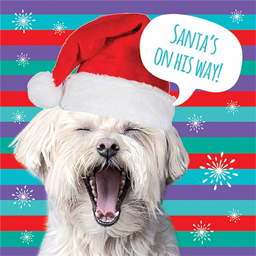 10 Pack Charity Cards - Santa's On His Way
