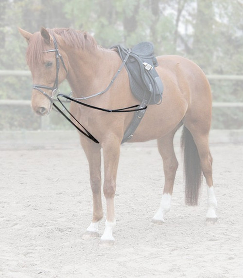 Lunging Draw Reins