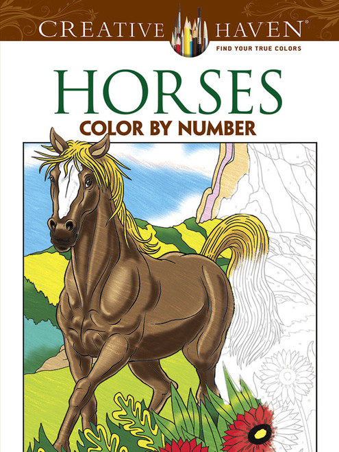 Horses Colour By Number Book