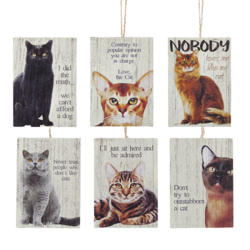 Wooden Cat Sayings Ornaments - Set of 6
