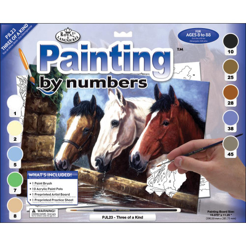 Paint by Number Kit - Three of a Kind
