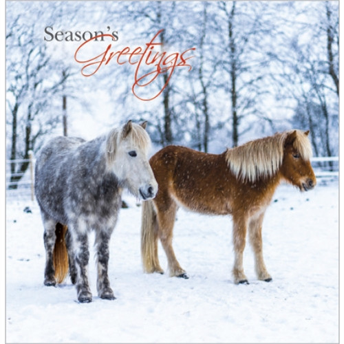 10 Pack Charity Cards - Christmas Ponies