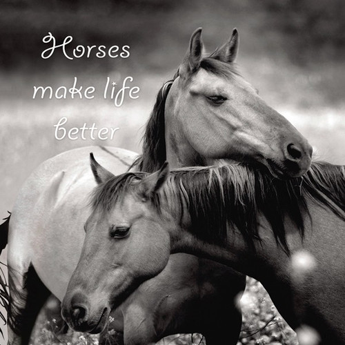 Eco Magnet - Horses Make Life Better