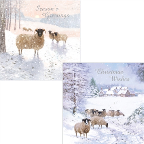 Christmas Cards 10 Pack  - Winter Wonderland