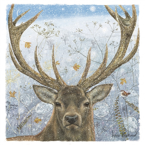 Christmas Cards 10 Pack - Winter Stag