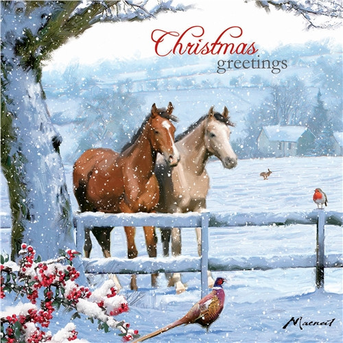 Christmas Cards 10 Pack  - Christmas Horses