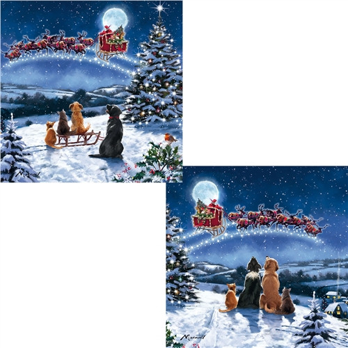 Christmas Cards 10 Pack  - Christmas Eve Dogs