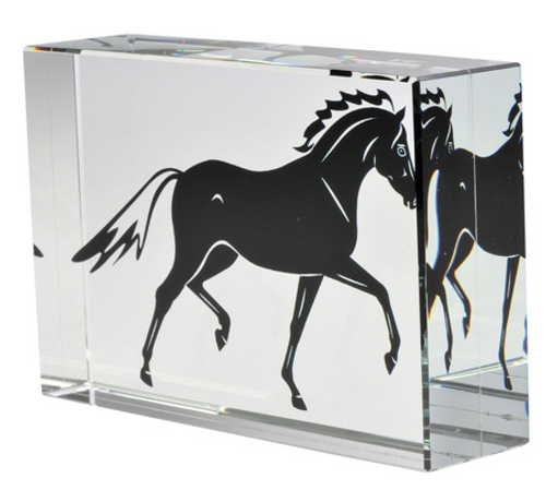 Stallion Glass Cube