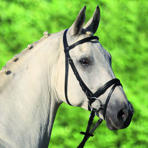 "STAR ""Lifestyle"" Bridle"
