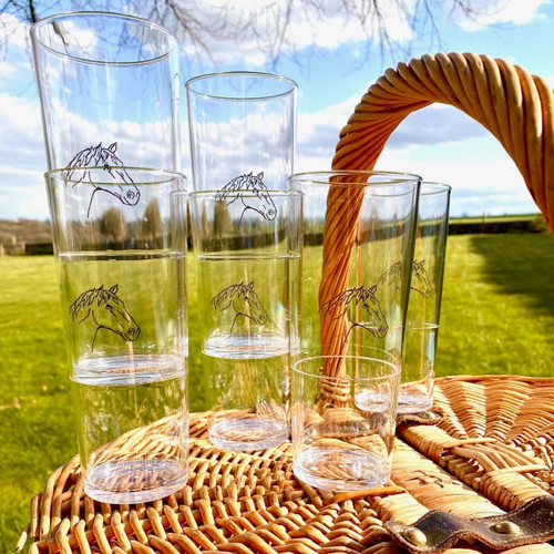 Polycarbonate Horse Head Highball Glasses - Set of 6