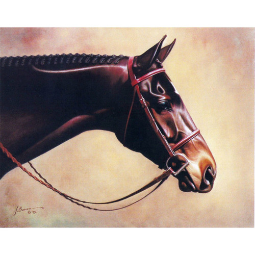 6 Pack Greeting Cards - Classic Elegance