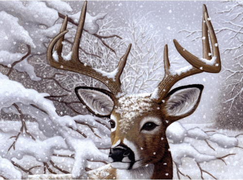 """Paint by Number Kit 15.25"""" x 11.25"""" - Dancing Snow"""