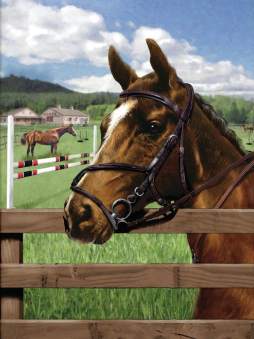 """Paint by Number Kit 8.75"""" x 11.75"""" - Equine Paddock"""