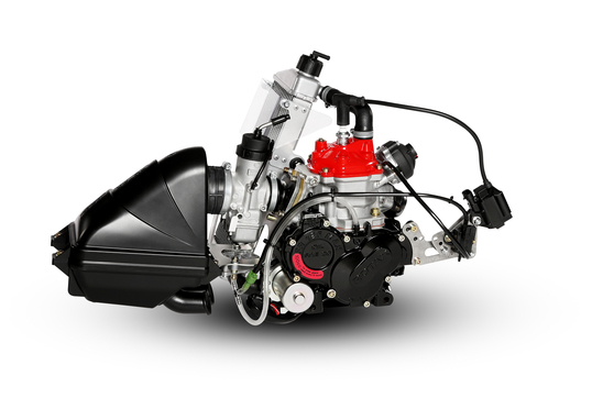 Rotax FR125 Engine
