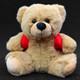 BooBuddy Jr. EMF Trigger Bear